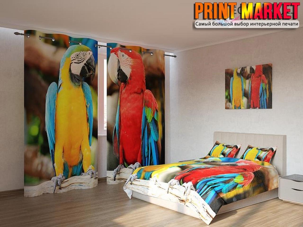 Фотокомплект попугаи