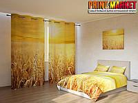 Фотокомплект поле пшеницы