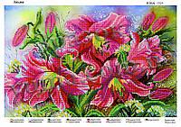 Схемы для вышивки лилии