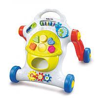 Каталка-ходунки Baby Mix PL-345816
