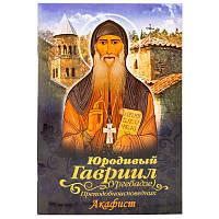 Юродивый Гавриил (Ургебадзе). Преподобноисповедник. Акафист, фото 1