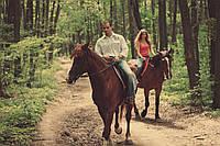 Подари прогулку на лошадях для двоих!