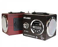 Портативная колонка Atlanfa АТ-R52 (220В,USB,SD,FM, , 2-динам.)