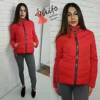 Красная демисезонная курточка на силиконе
