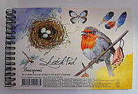 Альбом А5 На спирали Скетчбук AL-AKV-A5-12-SP-S/200g-1507 3608Пр Мандарин Украина