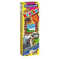 Крекер Vitakraft для африканских попугаев с орехами и фруктами, 2 шт