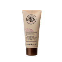 BB крем TheFaceShop Clean Face Oil-Free Blemish Balm