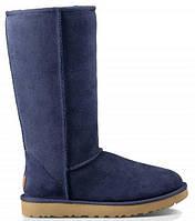 Женские зимние высокие сапоги - Угги UGG Classic Tall Blue, синие на меху арт.0392