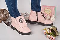 Демисезонные ботинки Rob_c@va!i натуральная кожа, внутри байка. Цвет пудра