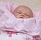 Конверт-одеяло в роддом на выписку осень Зефирка девочке, фото 3