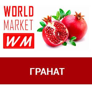 WM Гранат