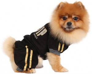 Спортивный костюм для собак XS черный VIP
