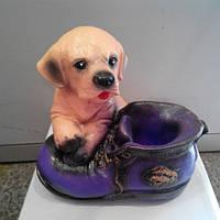 Копилка Собака с ботинком