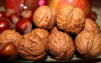 Саженцы ореха и фундука
