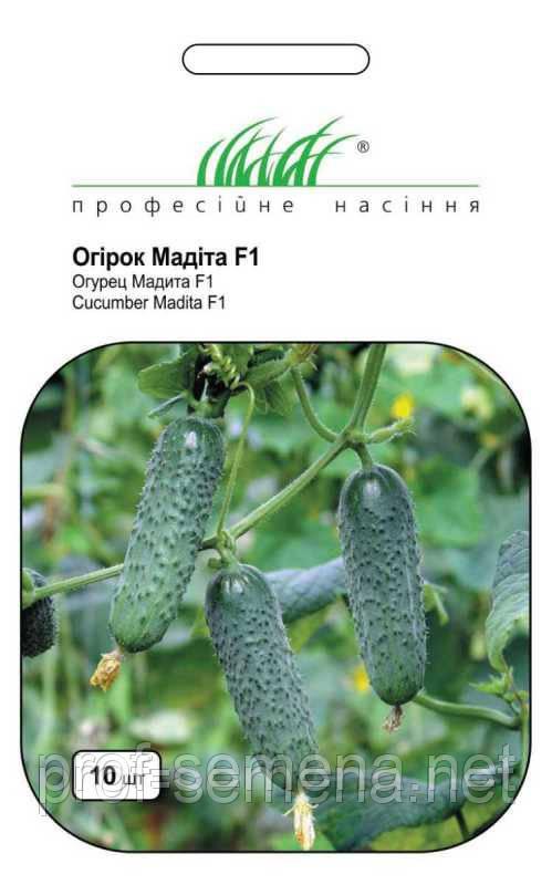Огірок Мадіта F1 10 шт