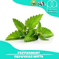 Ароматизатор TPA/TFA Peppermint Flavor (Перечная мята) 5 мл