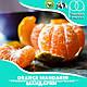 Ароматизатор TPA/TFA Orange Mandarin Flavor (Мандарин) 5 мл, фото 2