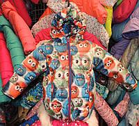 Куртка на девочку Еврозима флис+синтепон (4 размера) Птички, фото 1