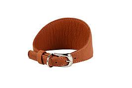Ошейник Collar Soft без украшений для борзых собак д. 23-27 см ш. 52 мм