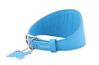 Ошейник Collar ГЛАМУР без украшений для борзых собак д. 23-27 см ш. 52 мм
