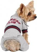 Спортивный костюм для собак S серый Fitness