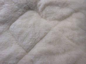 Овчина відкрита ковдру 200*220 Лері Макс, фото 2