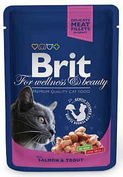 Влажный корм Brit кусочки с лососем и форелью для взрослых кошек, 100 гр