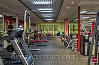 Фитнес покрытие для тренажерных залов, залов оздоровительных центров, залов для силовых тренировок