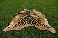 Шкура коровы крашенная под зебру на бежевом фоне