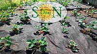 Черное Агроволокно - назначение, описание, видео