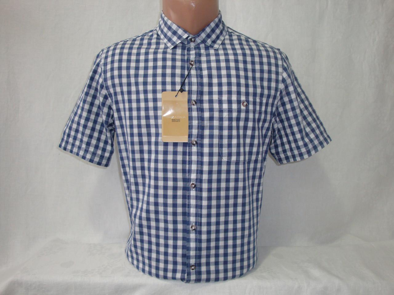 c71de0a4e80 Мужская рубашка в клетку с коротким рукавом Piazza Italia - Интернет-магазин