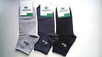 Мужские демисезонные носки Lacoste, хлопковые, 41-45