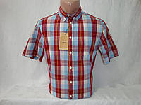 Мужская рубашка в клетку с коротким рукавом Piazza Italia