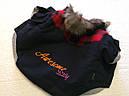 Куртка для собак Awesome DDY синяя коттон XL, фото 2