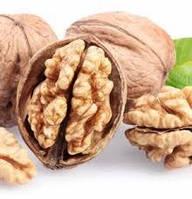 Привитые саженцы грецкого ореха Буковинский 1 (трехлетний)