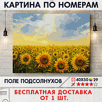 "Картина по номерам ""Поле подсолнухов"" 40х50 см"