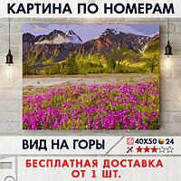 """Картина по номерам """"Вид на горы"""" 40х50 см"""