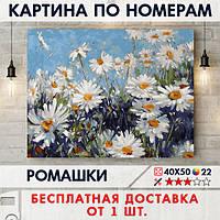 """Картина по номерам """"Ромашки"""" 40х50 см"""