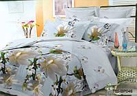 Полуторный комплект постельного белья Белая  Магнолия