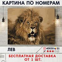 """Картина по номерам """"Лев"""" 40х50 см"""