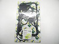 Комплект прокладок Master/Trafic 2.5dCi 01- (нижний)