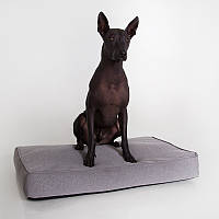 Dog Emmett Grey - Orthopedic (ортопедический лежак для собак)