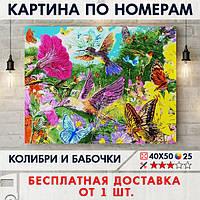 """Картина по номерам """"Колибри и бабочки"""" 40х50 см"""