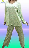 Купить пижамуженскую большого размера. Размеры от 54 до 64. 667-3