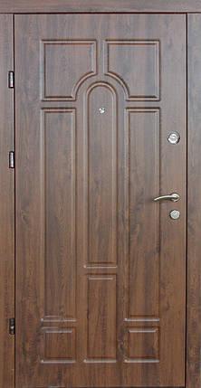 Наружные  входные двери Редфорт Арка винорит на улицу, фото 2