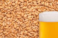Солод пшеничный Best Wheat Malt
