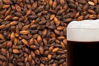 Солод Best Chocolate