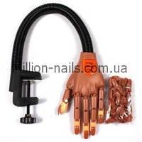 Тренировочная рука Nail Trainer для наращивания и моделирования ногтей