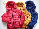 Куртки зимние для девочек Nature 9/10-15/16 лет, фото 2