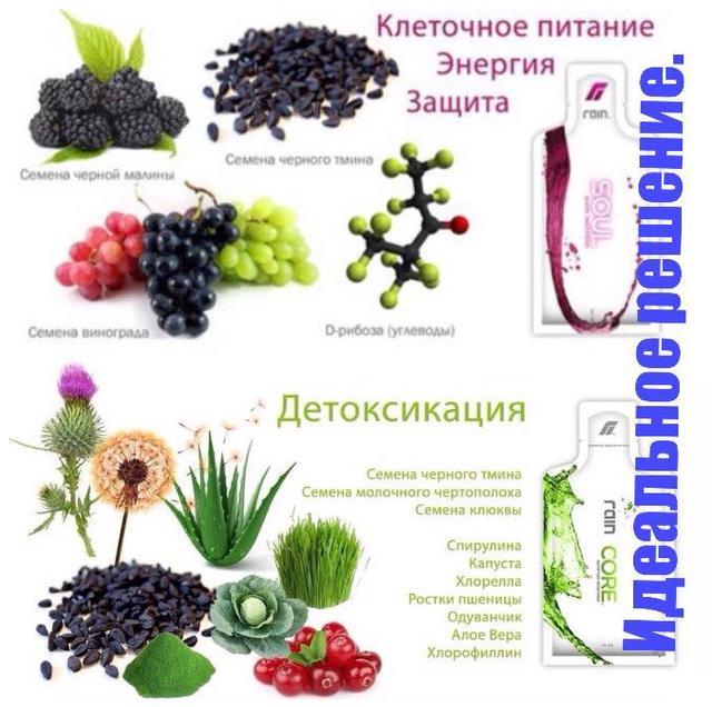 Витаминно-минеральные комплексы, клеточное питание RAIN